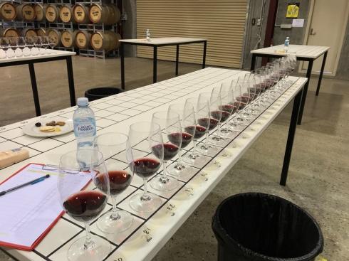 McLaren Vale Wine Show Judging